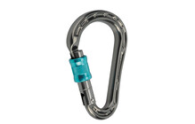 Mammut Bionic HMS Screw Gate basalt